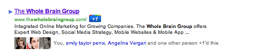 Google +1 Button in Search Results